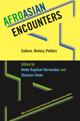 Image for Afroasian Encounters