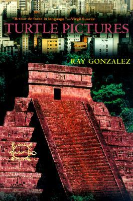 Turtle Pictures (Camino del Sol), Gonzalez, Ray