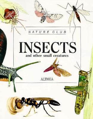 Image for Insects (Nature Club)
