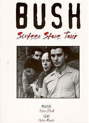 Bush Sixteen Stone Tour