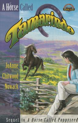 Image for A Horse Called Tamarindo (Pathfinder Junior Book Club)