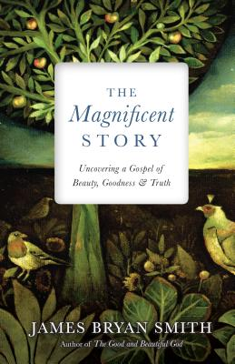 Image for The Magnificent Story: Uncovering a Gospel of Beauty, Goodness, and Truth (Apprentice Resources)