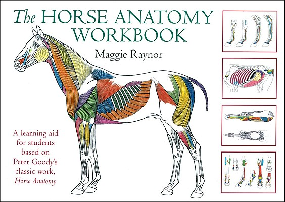 Image for The Horse Anatomy Workbook