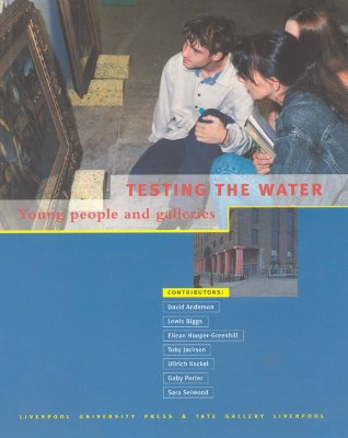 Image for Testing the Water: Young People and Galleries