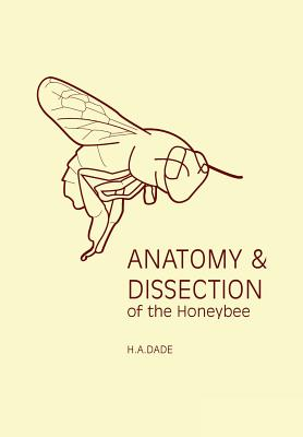 Anatomy and Dissection of the Honeybee, Dade, H A