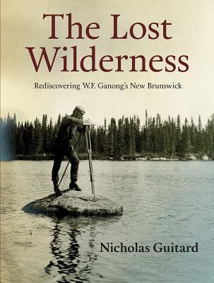Image for The Lost Wilderness