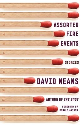 Assorted Fire Events: Stories, David Means