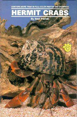 Image for Land Hermit Crabs
