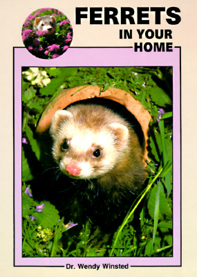 Image for Ferrets in Your Home