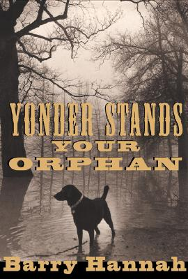 Image for Yonder Stands Your Orphan
