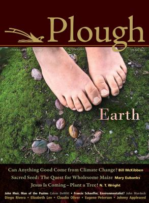 Image for Plough Quarterly No. 4: Earth
