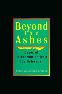 Image for Beyond the Ashes: Cases of Reincarnation from the Holocaust