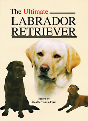 Image for ULTIMATE LABRADOR RETRIEVER
