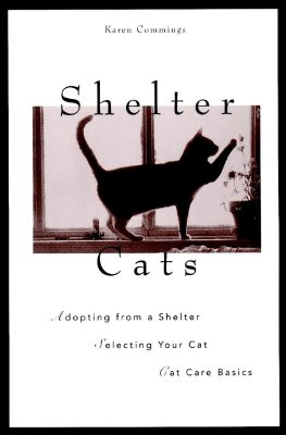 Image for SHELTER CATS ADOPTING FROM A SHELTER SELECTING A CAT CAT CARE BASICS