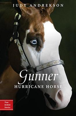 Image for Gunner Hurricane Horse