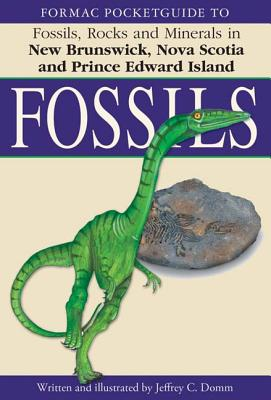 Image for Fossils Rocks Minerals in New Brunswick  Nova Scotio And Prince Edward Island
