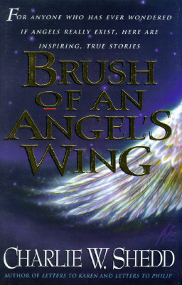 Image for Brush of an Angel's Wing