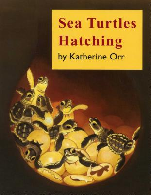 Image for Sea Turtles Hatching