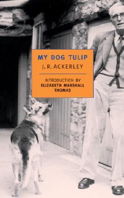 "My Dog Tulip, ""ACKERLEY, J. R."""