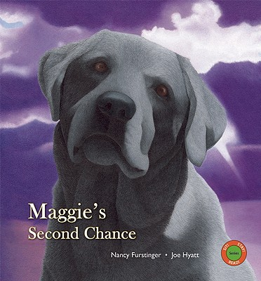 Image for Maggie's Second Chance (Sit! Stay! Read!)