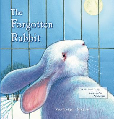 The Forgotten Rabbit, Furstinger, Nancy