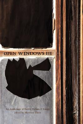Image for Open Windows III