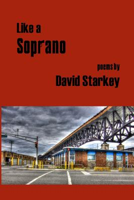 Image for Like a Soprano