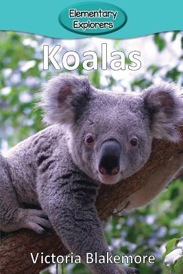 Koalas (Elementary Explorers), Blakemore, Victoria