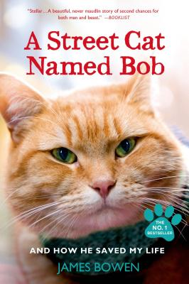 Image for Street Cat Named Bob: And How He Saved My Life
