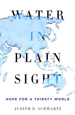 Water in Plain Sight: Hope for a Thirsty World, Schwartz, Judith D.