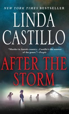 Image for After the Storm: A Kate Burkholder Novel (Kate Burkholder (7))