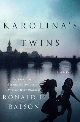 Image for Karolina's Twins: A Novel (Liam Taggart and Catherine Lockhart)