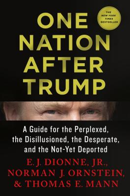 Image for One Nation After Trump: A Guide for the Perplexed, the Disillusioned, the Desperate, and the Not-Yet Deported