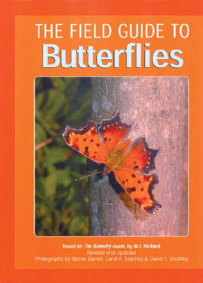 Image for Field Guide to Butterflies