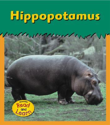 Image for Hippopotamus (Zoo Animals)