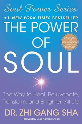 Image for The Power of Soul: The Way to Heal, Rejuvenate, Transform, and Enlighten All Life (Soul Power Series)