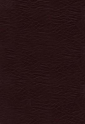 KJV, The Woman's Study Bible, Bonded Leather, Burgundy (Signature), Thomas Nelson (Author)