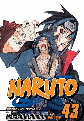 Image for Naruto, Vol. 43: The Man with the Truth