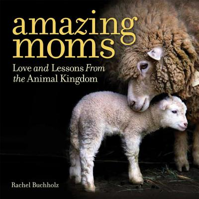 Image for Amazing Moms: Love and Lessons From the Animal Kingdom