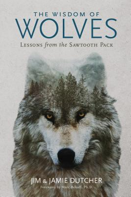 Image for The Wisdom of Wolves: Lessons From the Sawtooth Pack