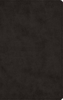 "Image for ""''ESV Men's Devotional Bible (TruTone, Black)''"""