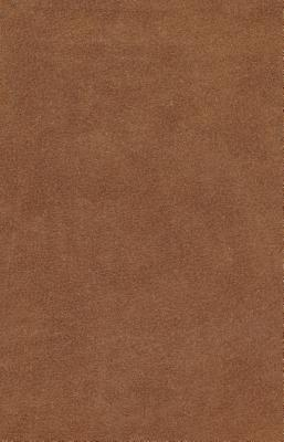 Image for ESV Holy Bible, Value Edition (Brown)