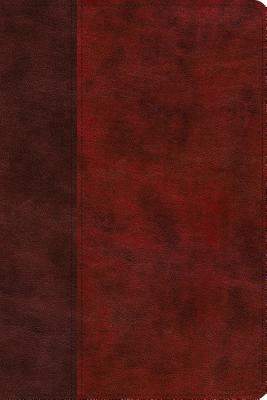 Image for ESV Story of Redemption Bible: A Journey through the Unfolding Promises of God (TruTone, Burgundy/Red, Timeless Design)