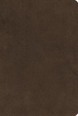 Image for ESV Large Print Compact Bible (Microsuede, Brown)