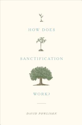 Image for How Does Sanctification Work?