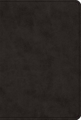 "Image for ""''ESV Value Large Print Compact Bible (TruTone Imitation Leather, Black)''"""