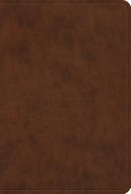"Image for ""''ESV Value Large Print Compact Bible (TruTone Imitation Leather, Brown)''"""