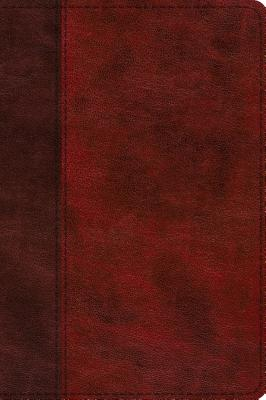 """Image for """"''ESV Journaling New Testament, Inductive Edition (Burgundy/Red), Timeless Design''"""""""