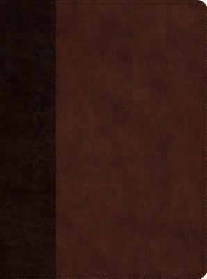 Image for ESV Proverbs: Daily Wisdom (TruTone, Brown/Walnut, Timeless Design)