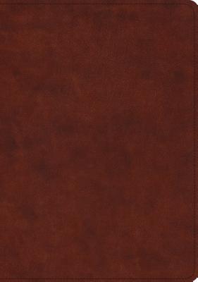 Image for ESV Study Bible (TruTone, Chestnut)